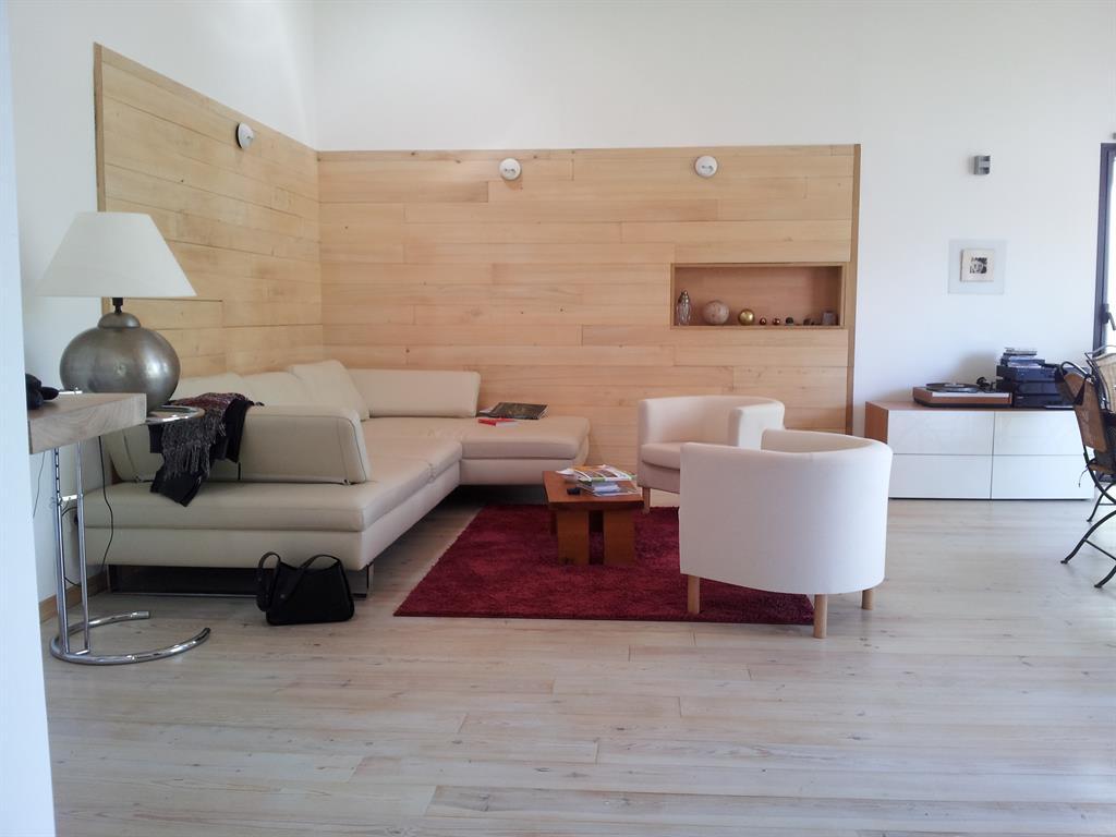 salon-design-et-contemporain-murs-avec-placage-bois ...
